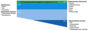 uhod-za-bassejnom-ochistka-vody-v-bassejne-11