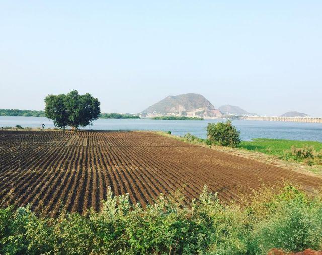 Foster + Partners разрабатывают генплан новой столицы индийского штата