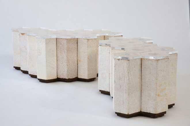 Canadian researchers use mushroom building blocks