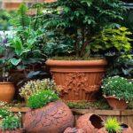 klumby-vo-dvore-chastnogo-doma-foto-14