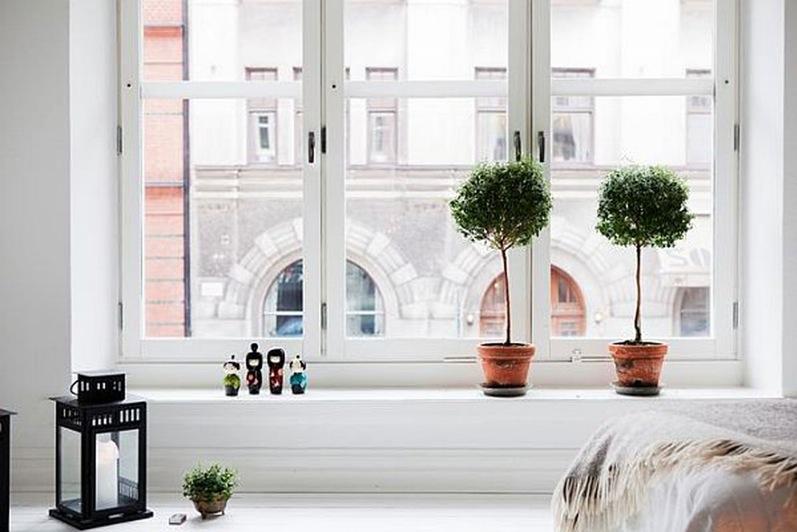 Евроокна для ваших квартир и офисов